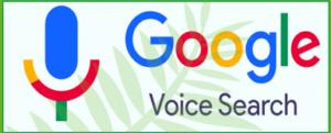 google Voice - w3web.net
