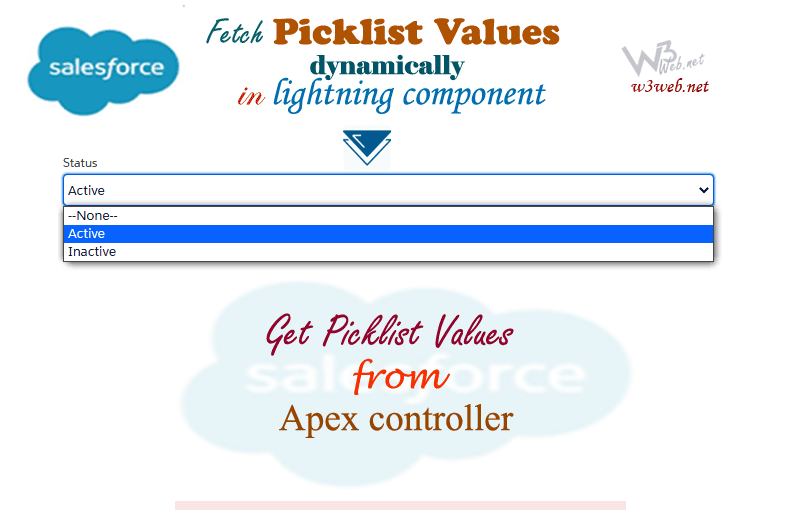 getting picklist values dynamically by w3web.net