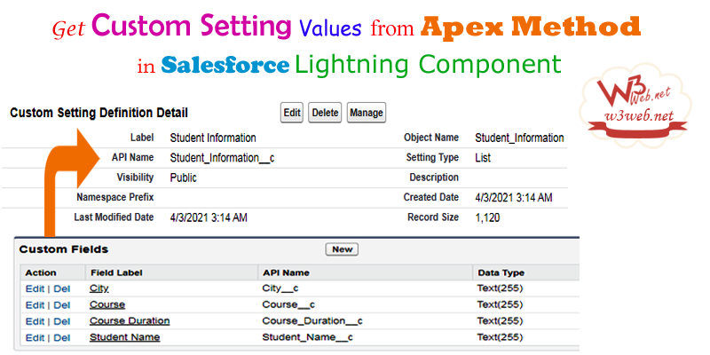 get Custom setting values from apex method in lightning component -- w3web.net