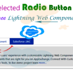 Create horizontal tabs uses of selected radio group button using 'lightning-radio-group' element and display selected radio value in Salesforce Lightning Web Component — LWC   How to display selected radio value in lwc