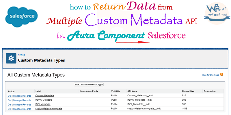 display different types of metadata in aura component -- w3web.net