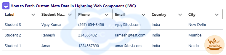 display custom metadata in lwc -- w3web.net